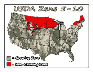 Paw Paw Tree USDA Growing Zones