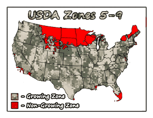 Prepper Nectarine Trees USDA Growing Zones