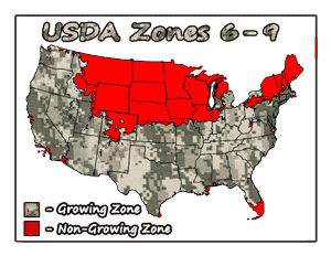 Nellie R. Steven's Holly USDA Growing Zones