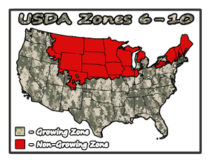 Prepper Fig Trees Usda Growing Zones